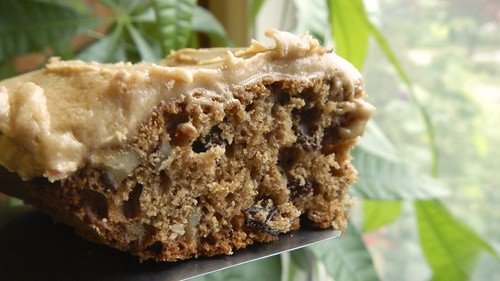Coffee Raisin Nut Bars 20