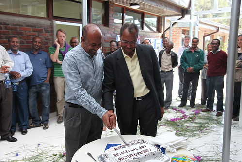 Jimmy Smith and Said Silim (country manager ICARDA Ethiopia and coordinator sub saharan Africa program) cutting the cake for the renovated nutritional labs (Photo credit: ILRI/Addis Tigabu)