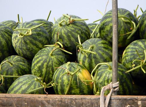 Floating Market Mekong River Selling Watermelon