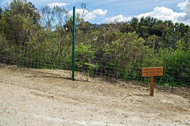 The Zinfandel Trail starts from the gravel parking lot behind the tasting room.