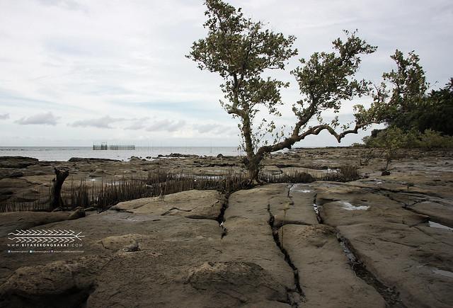 Jawili to Afga Tangalan Aklan Beach