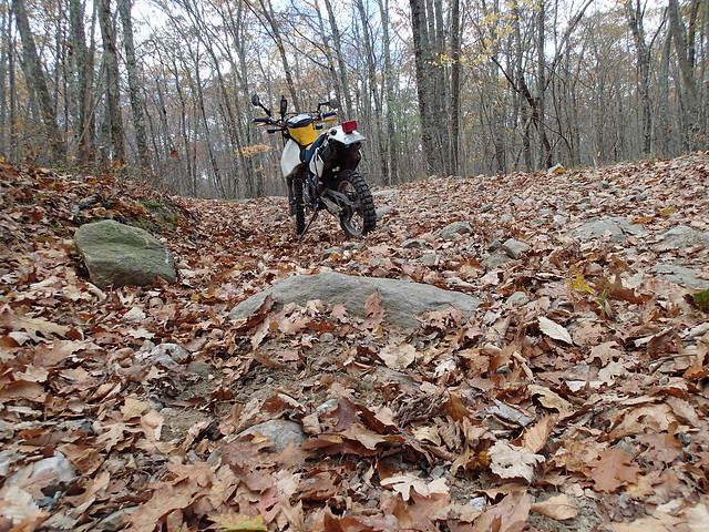 DR350 upright again, after a quick nap in the woods