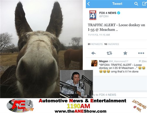 The ANE Show listeners were worried the other day when a news report said that a donkey was on the loose in the Dallas Fort Worth area. by theaneshow