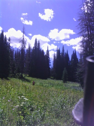 Yurt trail