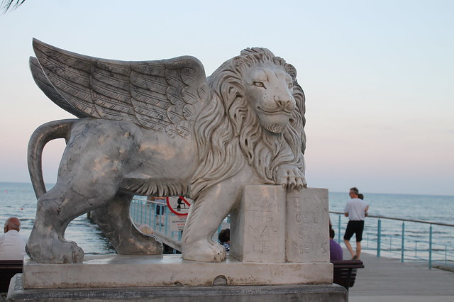 Lion on the seaside