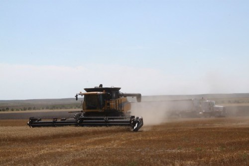 Combining one of our last fields in Neb.