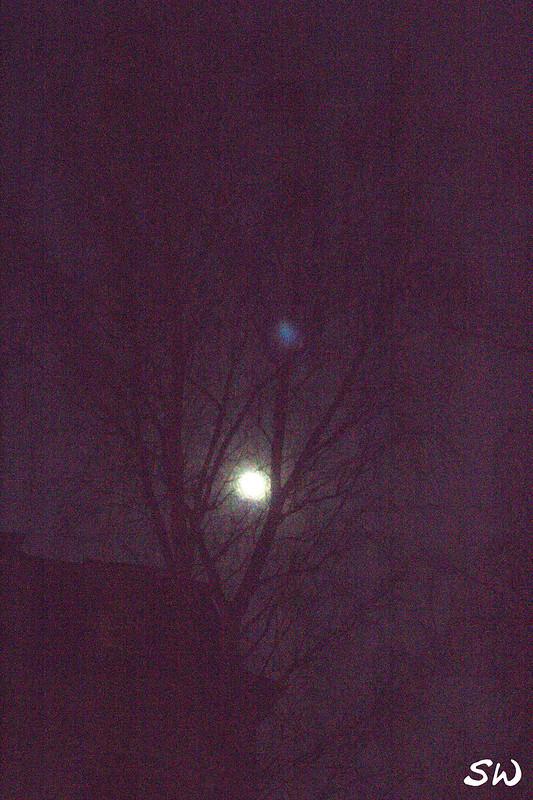 16_Moon