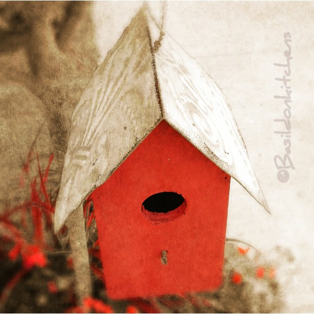 July 12 - birdhouse {this cute little house was in front of a local store} #TitleFx #photoaday #birdhouse #red #princeedwardcounty
