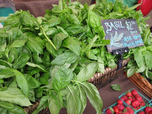 Saturday Market - Basil