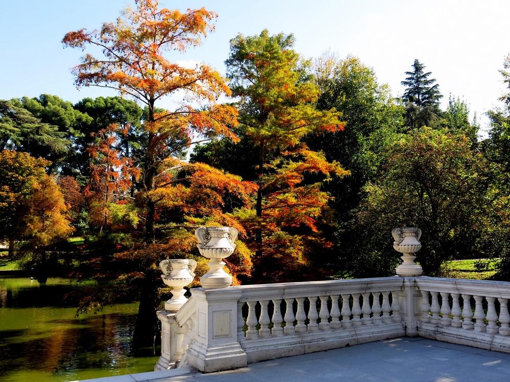 7. Un rincón del Parque. Autor, Manuel Martín Vicente