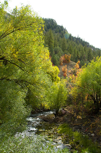 Logan Canyon 1