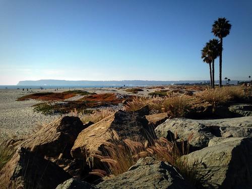 California Dreamin' by Brian Williamsen