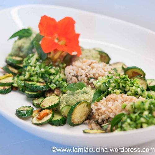 Zucchini total 2013 08 07_1284