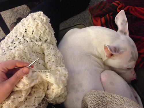 Knitting buddy