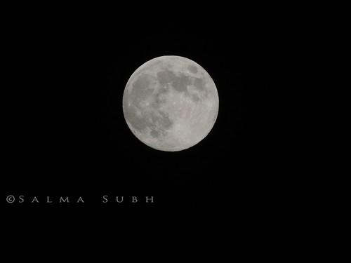 DSCN1593 by salma subh