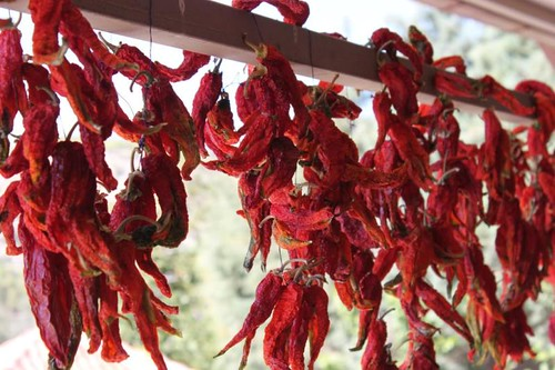 20131009_6969_red-chilli-peppers-drying_Medium