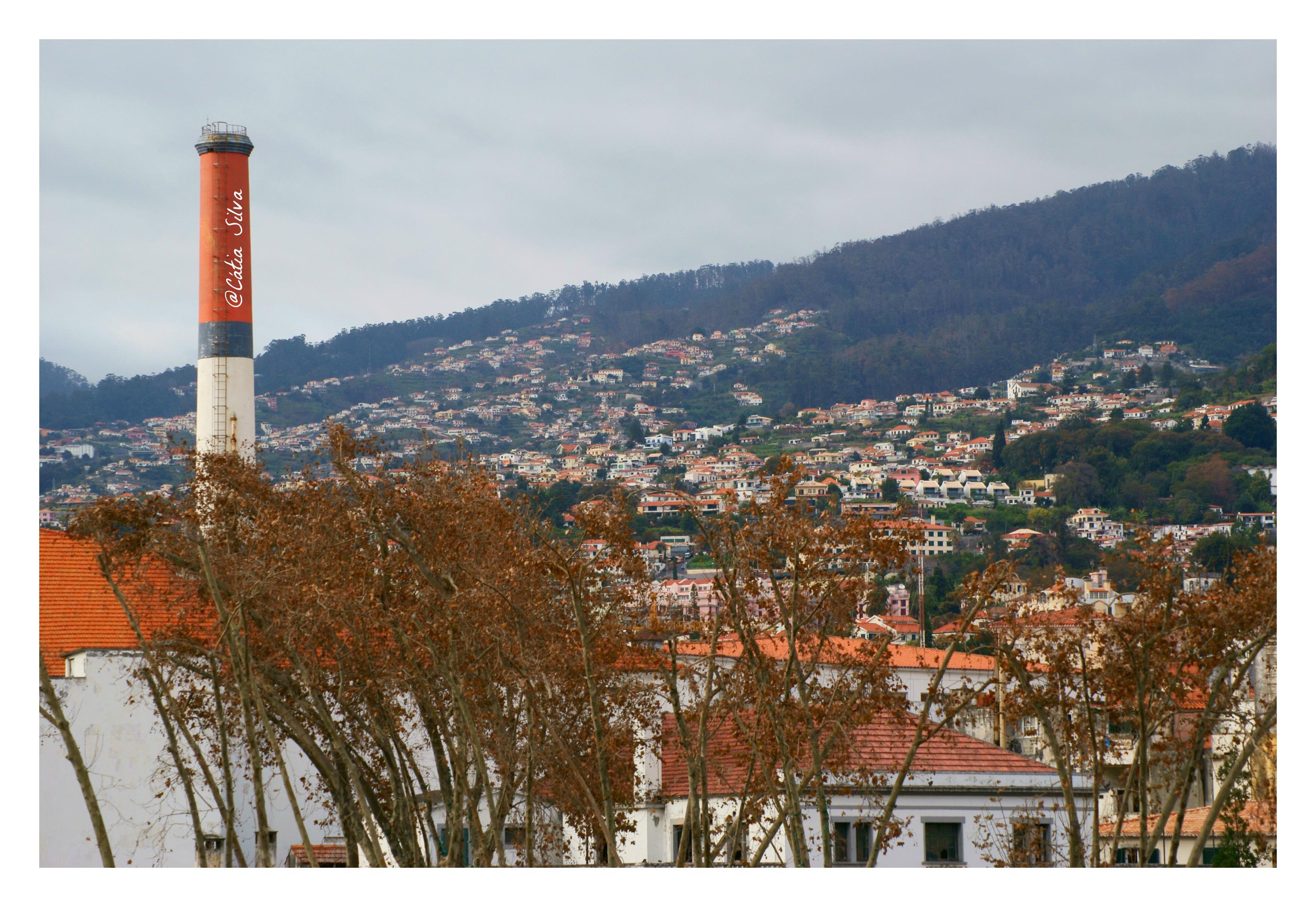 Funchal - Madeira (12)