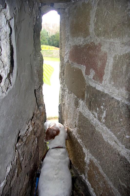 Berta explores Skipton Castle
