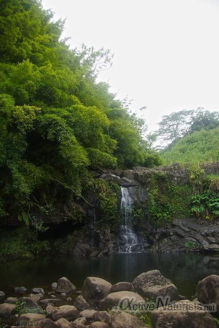 bamboo forest & waterfall 0000 Na'ili'ili-haele, Maui, Hawaii, USA