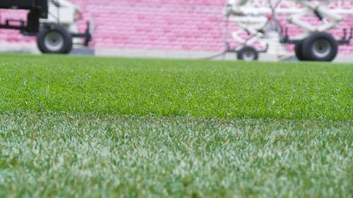 สนามหญ้าที่ Camp Nou สนามของ FC Barcelona