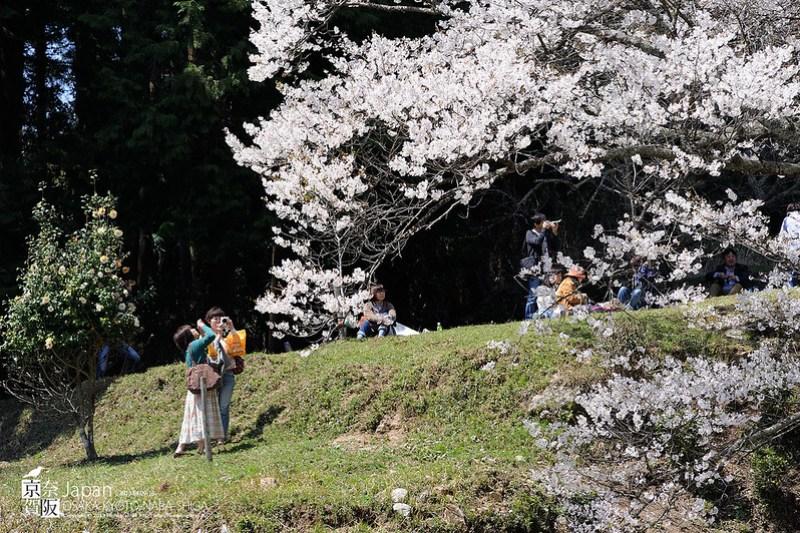 Japan-1490