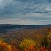 Catskills Late Autumn