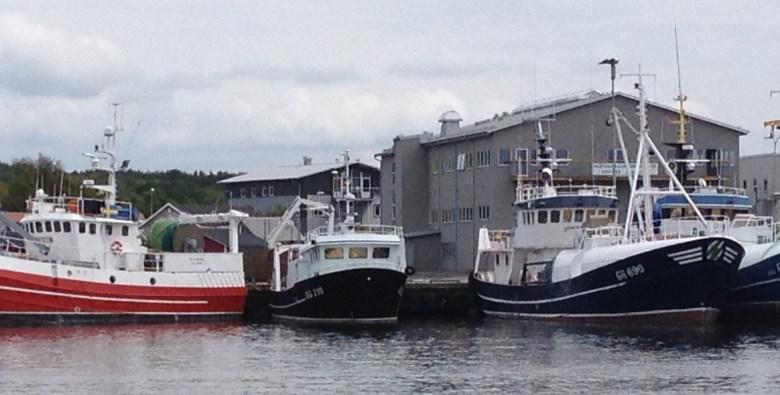fiskeback12juli_2015-3 - 3