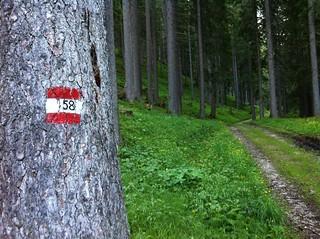 Aufstieg Herrenstein Markierung 58