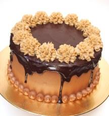 Chestnut Chocolate sponge cake