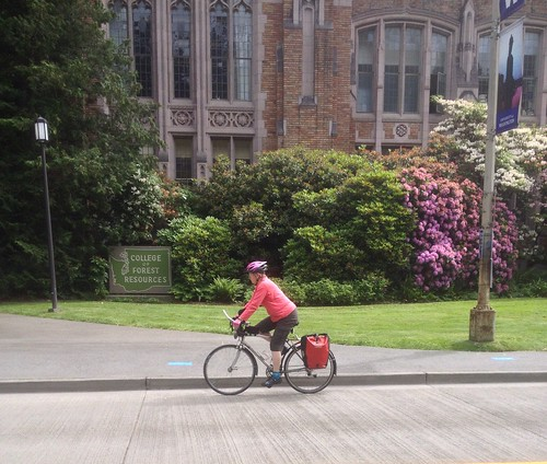 A woman biking on the UW campus