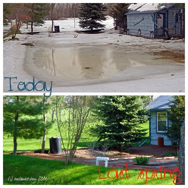 12/1/2014 - in a parallel universe I wouldn't have to deal with all this ice, snow & water #photoaday #garden #winter #weather #ice #snow #water #rain