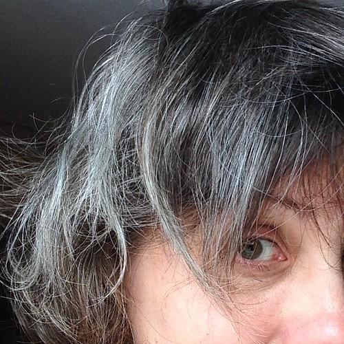 Grey! #mo365 #365feministselfie