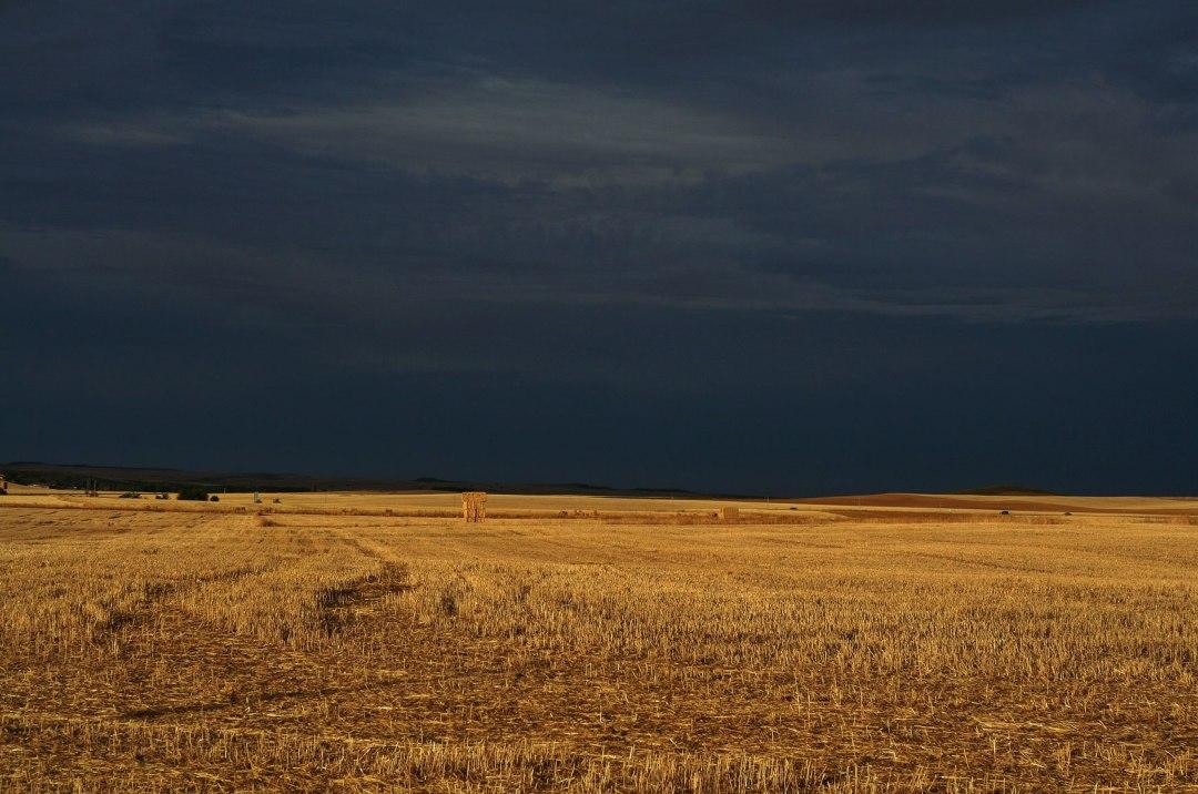 5. Luz antes de la tormenta. Carrión de los Condes, Palencia. Autor, Digustipado