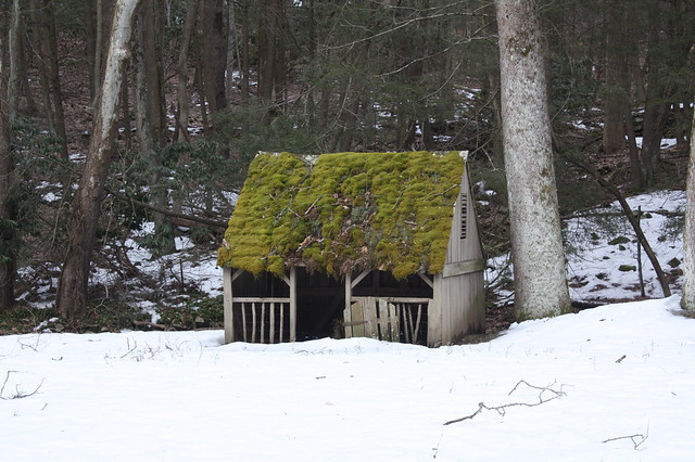 a moss covered storybook cottage type structure