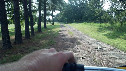 cycling in the shade by under the skies of arkansas