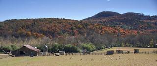 Nacoochee Valley Farm