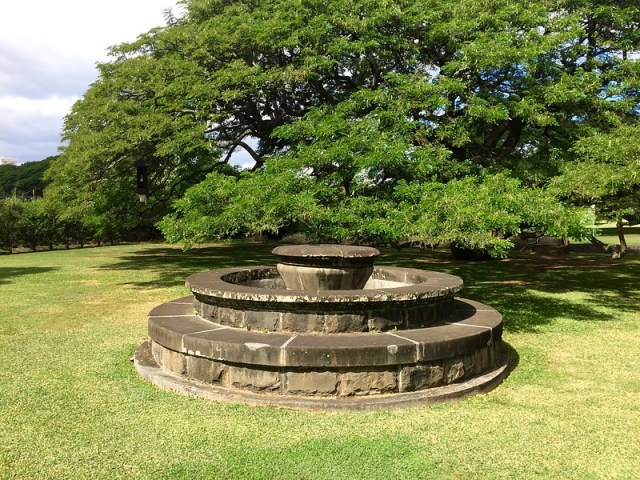 Picture from Moanalua Gardens