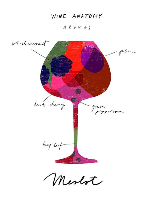 Anatomy of Red Wine