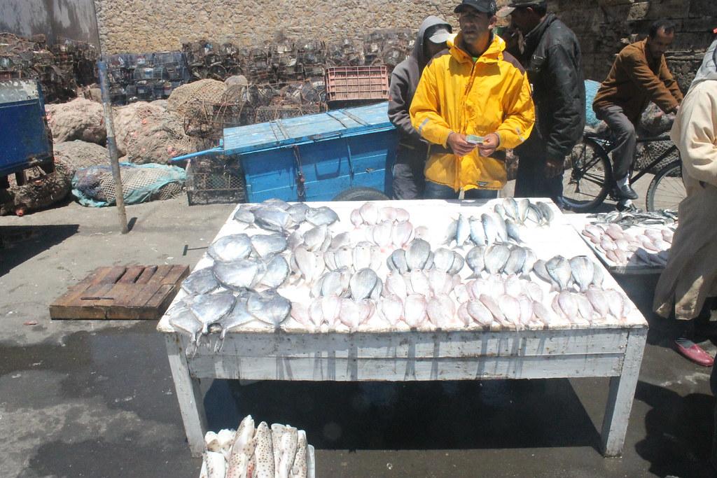 Pescado fresco en Essaouira
