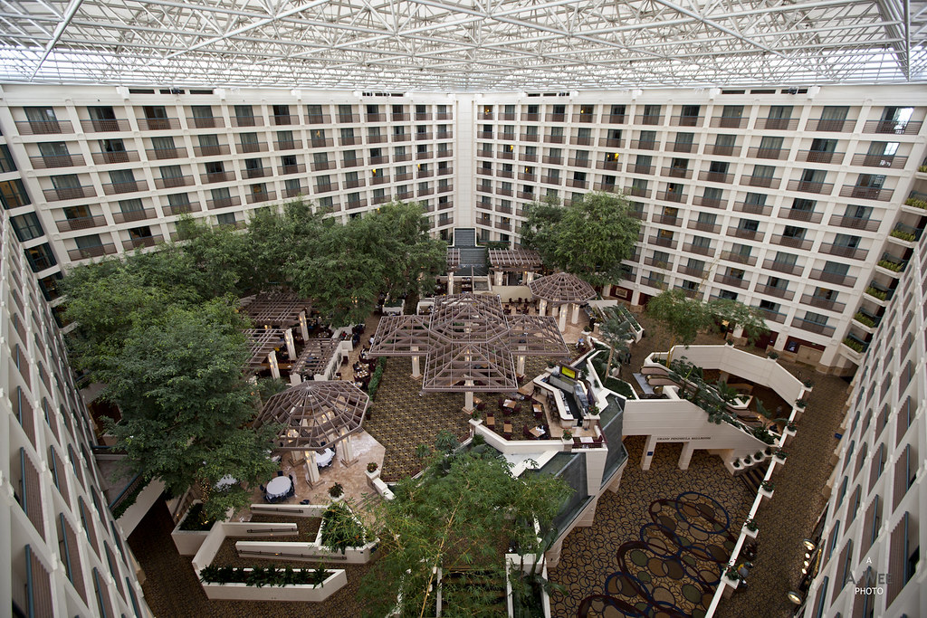 The Hotel Atrium in the Day