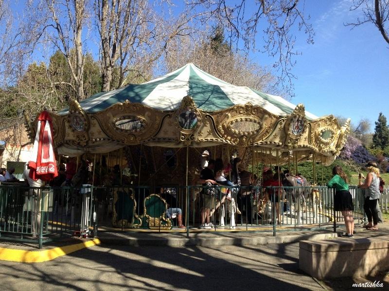 Oakland Zoo (41)