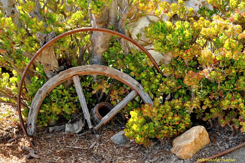 broken_wheels_web