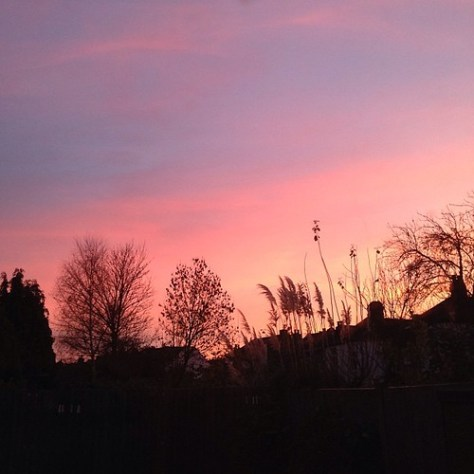 Beautiful colours in the sky this morning #nofilter