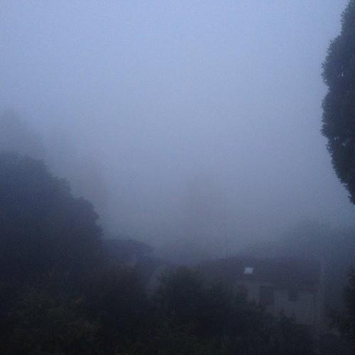 Fog in SF