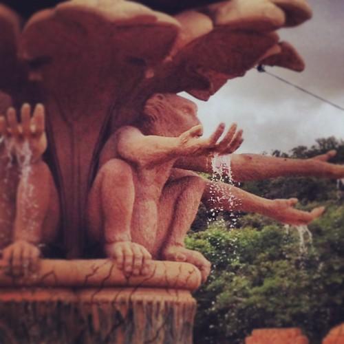 The monkey fountain