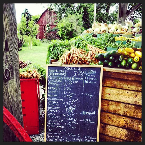 Aug 4 - fresh {fresh fruit & veggies} I love this time of year. #fmsphotoaday #fresh #veggies #fruit #farmstand #princeedwardcounty #laundryfarms