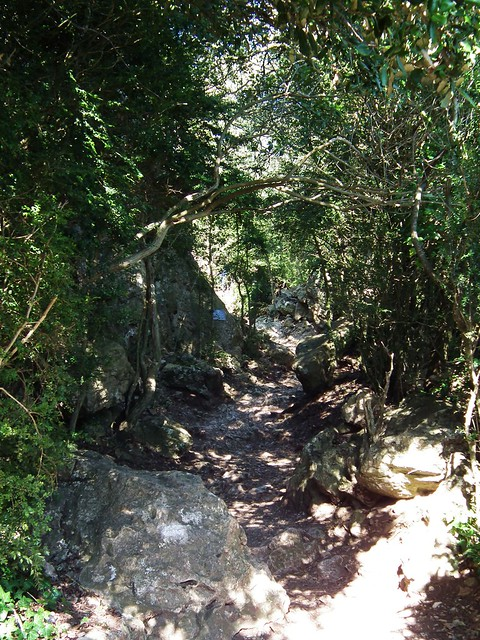 The path to Peyrepertuse Castle