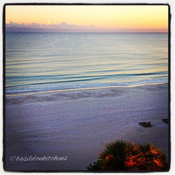 Sep 17 - in front of me {the Gulf of Mexico} A great spot for my morning coffee #fmsphotoaday #morning #sunrise #beach #gulfofmexico #florida #madeirabeach #palmtree