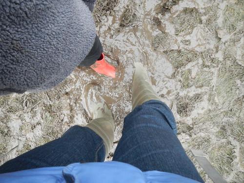 Mud, mud, mud.