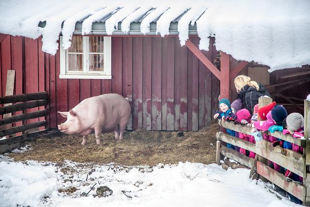 Tur til Norsk Folkemuseum #03